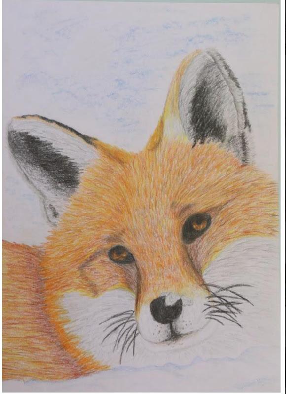 obrázek lišky